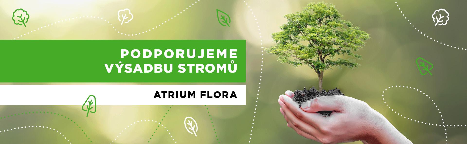 Podpořili jsme výsadbu stromů